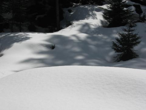 La neige, intacte à côté du chemin